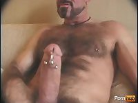 Naughty Bear Jerking Pierced Cock